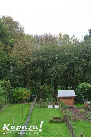 Achter die bomen ligt het provinciaal Domein.