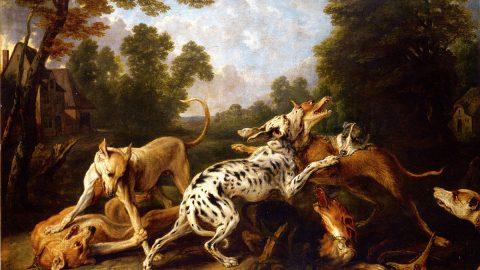Het meervoud van hond is honderden